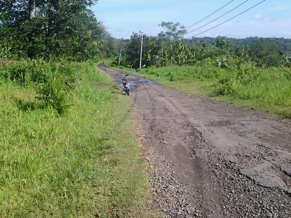 Akses jalan menuju Desa Surian