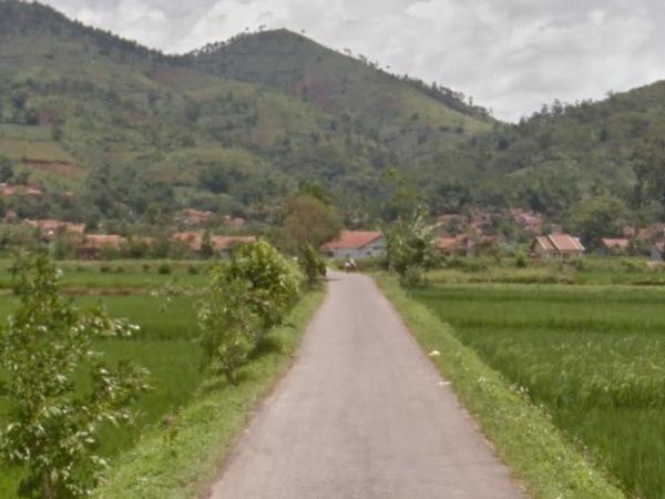 Akses jalan Desa Sukadana (foto: Google Street View)