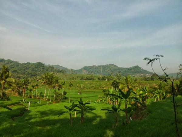 Panorama alam Sukaluyu (foto: sumedang-kiwari)