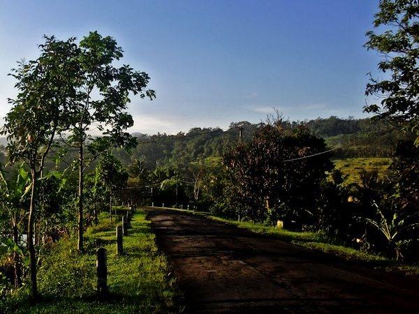 Alam Desa Sukamaju (foto: Panoramio Sulistiono Sulis)