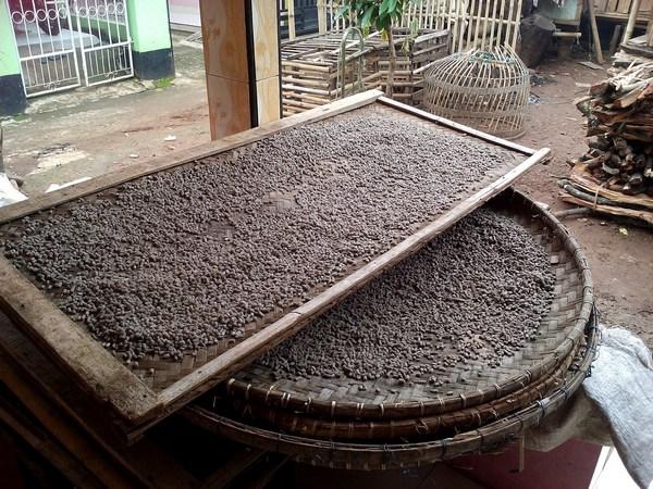 Bahan Kerupuk Bangreng (foto: KKU STIE SAS)