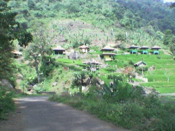 Beberapa bangunan yang ada di perkebunan teh Margawindu