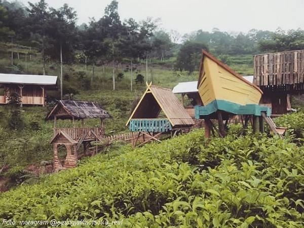 Wahana di wisata Saung Jalitri di tengah kebun teh