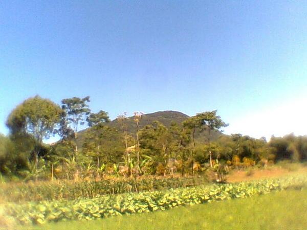 Bukit Jarian (foto: Kisah Kita Bersama)