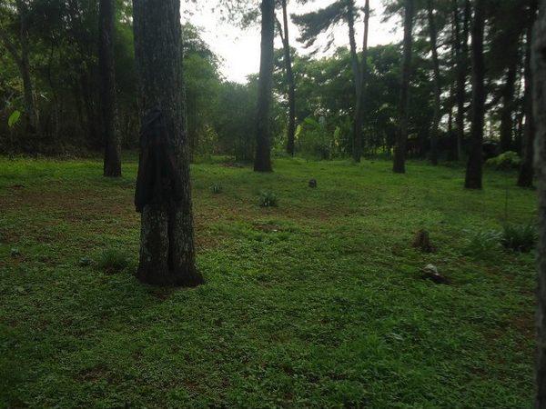 Lokasi berkemah di bukit Cipanteneun