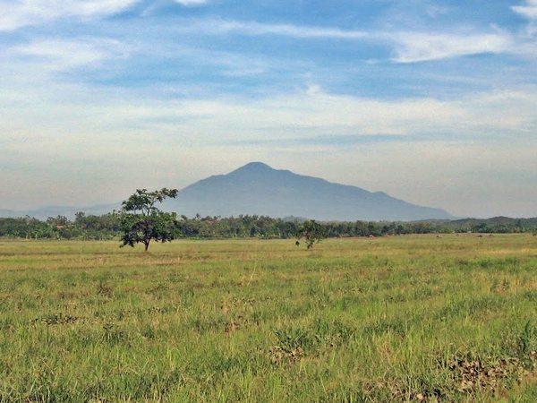 Hamparan lahan (foto: Panoramio Nasrul Ahmad)