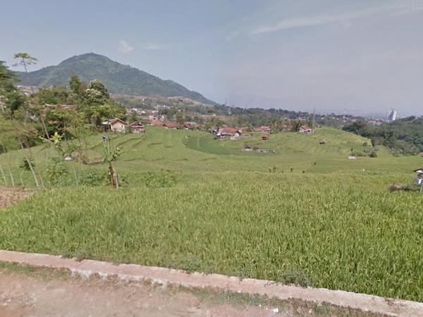 Hamparan sawah Desa Kutamandiri (foto: Google Street View)