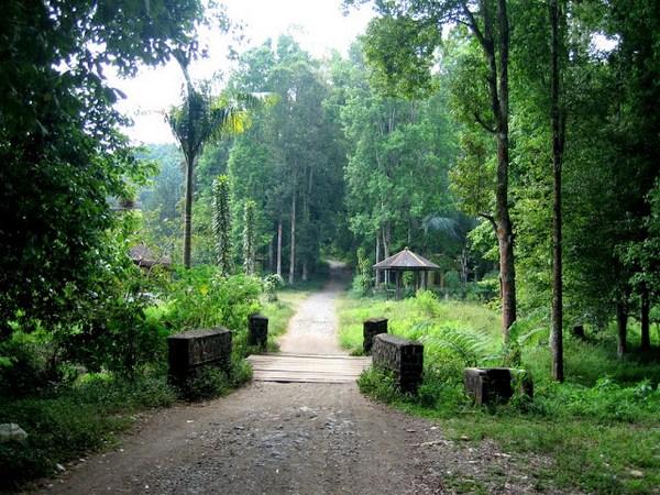 Jembatan kayu menuju Taman Buru Masigit-Kareumbi
