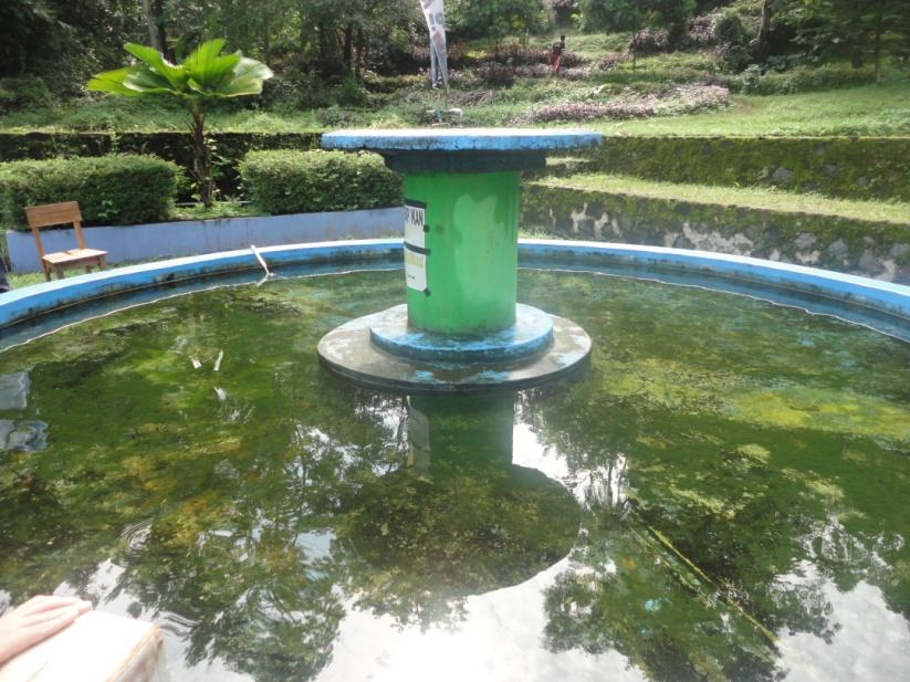 Kolam terapi ikan (foto: facebook Wana Wisata Cigirang)