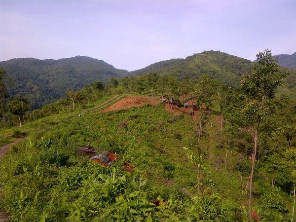 Lahan pertanian di Desa Cipeuteuy (foto: facebool Cikalingsem Cipeuteuy)