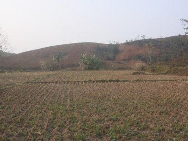 Lahan pesawahan yang kekeringan di Desa Jemah (foto: facebook)