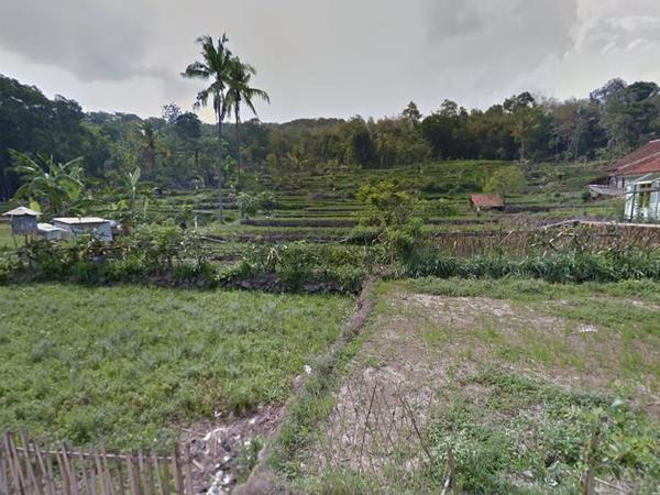 Lahan pesawahan mengering (foto: Google Street View)