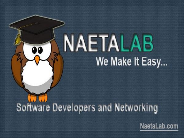 NaetaLab, regu kerja pengembang software dan jaringan