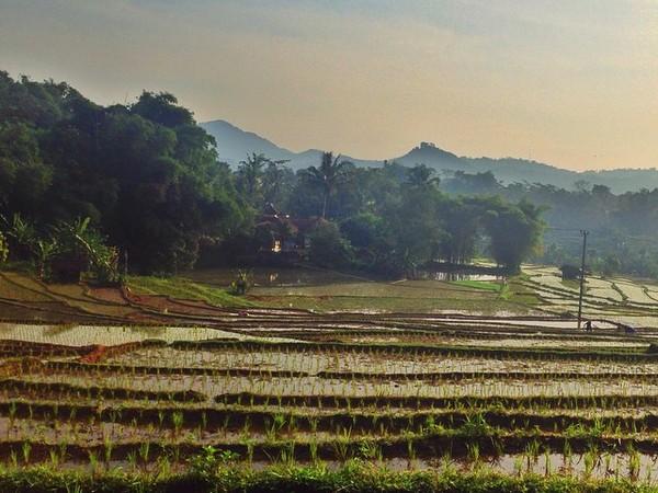 Keindahan panorama alam di Desa Banjarsari (foto: instagram)