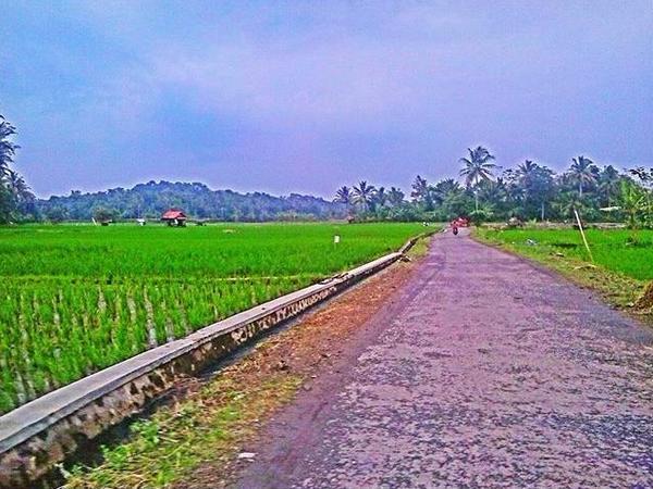 Panorama alam dan akses jalan di Desa Cibubuan (foto: Instagram @rizkianimw)