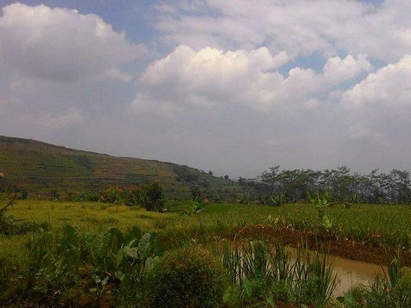 Panorama alam Desa Cimanggung (foto: facebook Des Cimanggung)