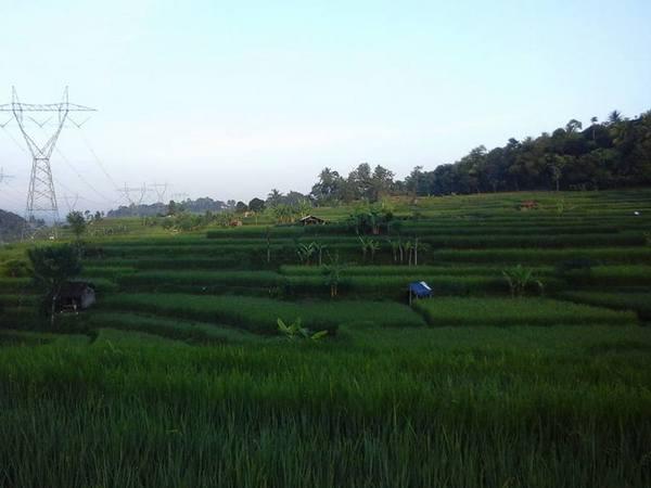 Panorama alam Desa Cimara (foto: facebook Engkos Kosasih Sanjaya)