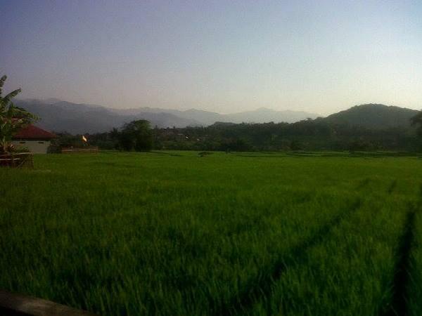 Salah satu panorama alam Desa Haurkuning (foto: Agusaries Lesmana)