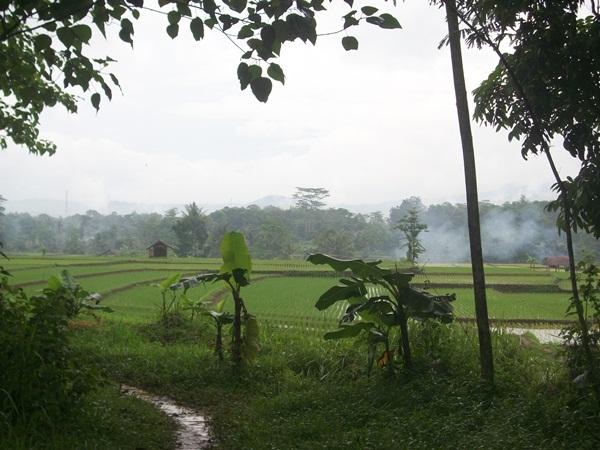 Salah satu panorama alam Desa Jatimekar (foto: KKNM Unpad Jatimekar)