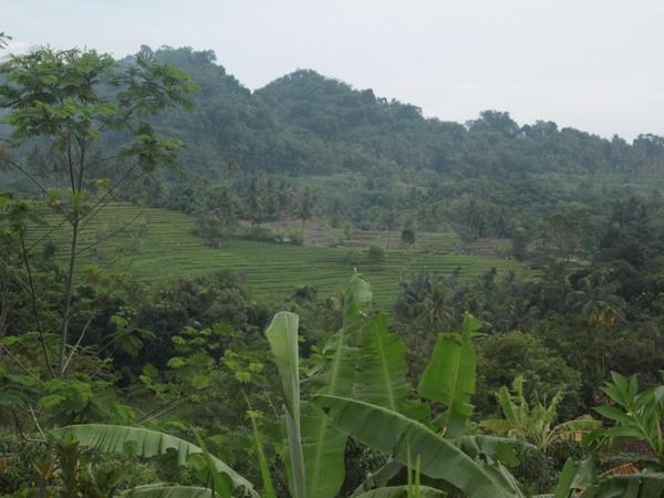 Panorama alam Desa Pasireungit (foto: Desa Pasireungit)