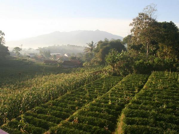 Panorama alam (foto: facebook Rosma Dahlia Widiantika)