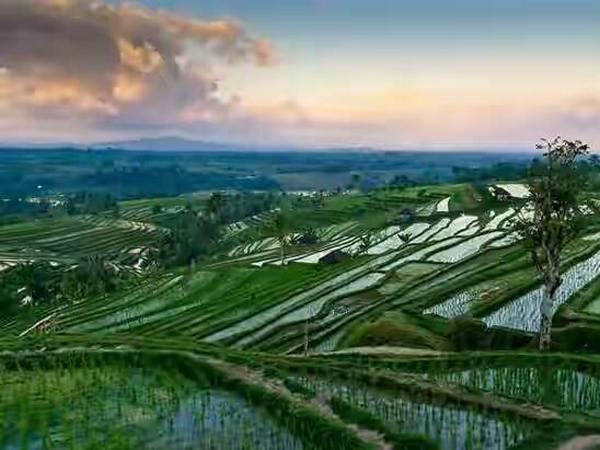 Panorama alam Pasirbiru (foto: internet)