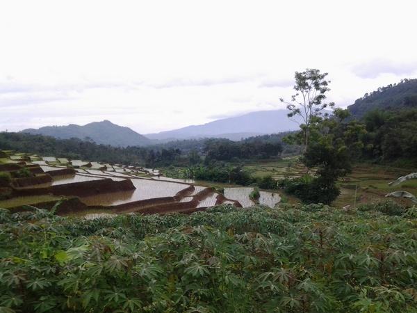 Panorama alam Desa Cikondang