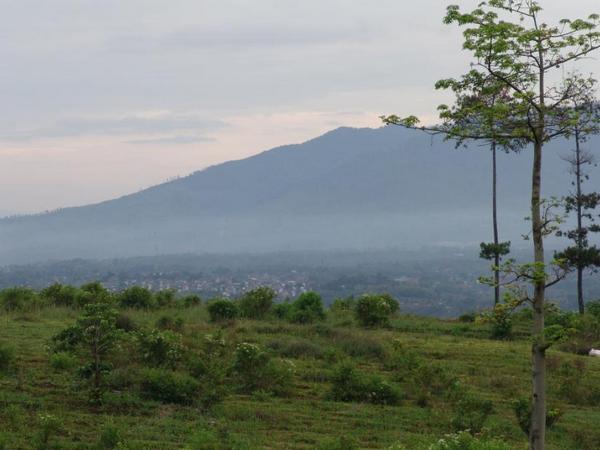 Panorama alam Desa Cilayung (foto: Pemerintah Desa Cilayung)