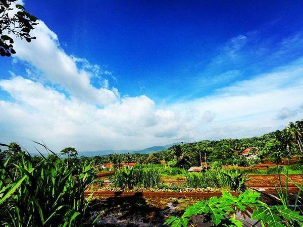 Panorama Desa Jatihurip (foto: instagram @urang_sumedang_thea)