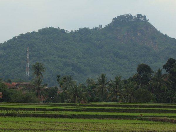 Panorama Gunung Kacapi (foto: Panoramio Ari Hakim)