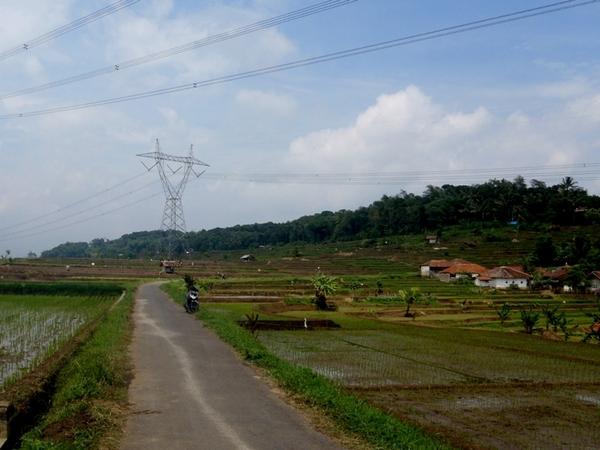 Panorama pesawahan di Desa Mandalaherang (foto: KKNM Unpad Mandalaherang)