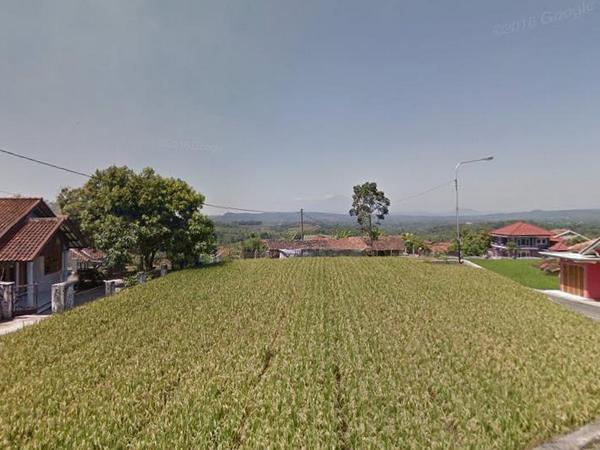 Panorama pesawahan Desa Cipandanwangi (foto: Google Street View)