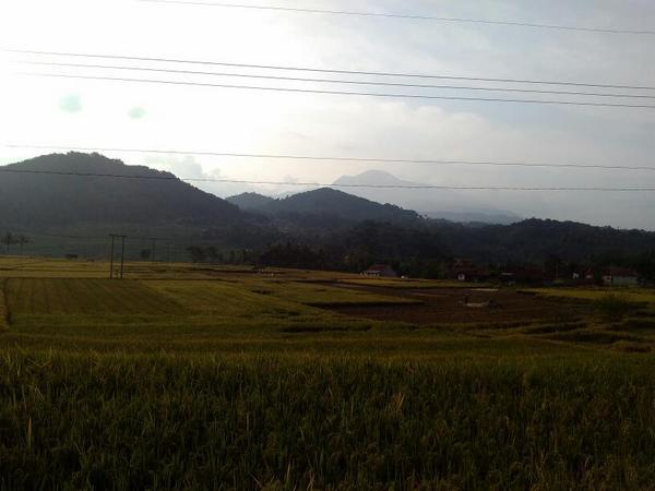 Panorama pesawahan (foto: g+ Yusup Purwana)