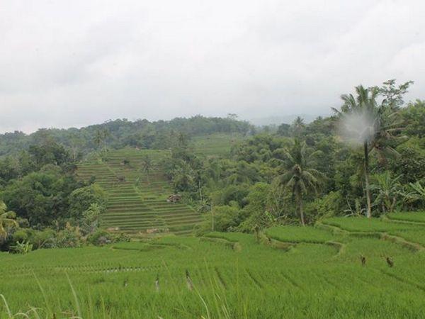 Pemandangan alam Desa Citepok (foto: Asep Sofian di facebook)