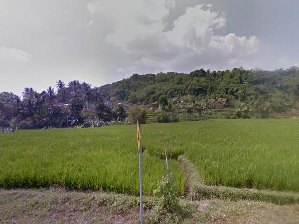 Pesawahan di Desa Cipanas (foto: Google Street View)