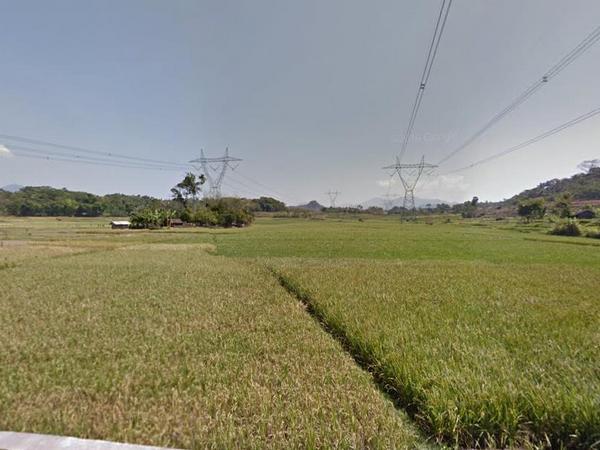 Pesawahan Desa Kebonkalapa (foto: Google Street View)