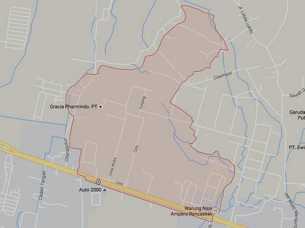 Peta wilayah Desa Cinta Mulya (gambar: Google Maps)