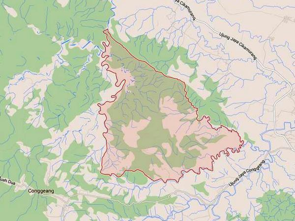 Peta wilayah Desa Ungkal (gambar: Google Maps)