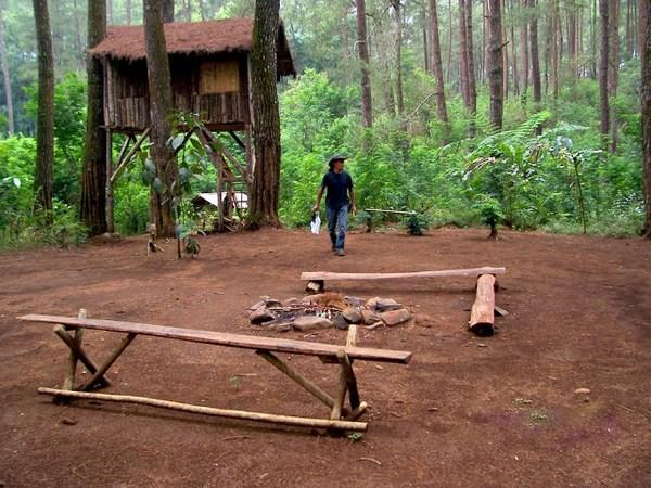 Rumah pohon Taman Buru Masigit-Kareumbi