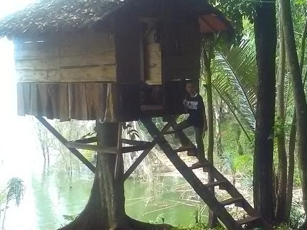Rumah pohon di Curug Mas (foto: g+ usep ruhdiana)