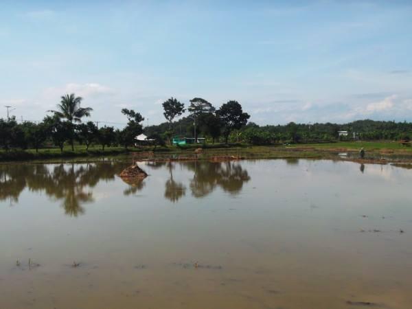 Salah satu kawasan di Desa Sakurjaya (foto: Desa Sakurjaya)