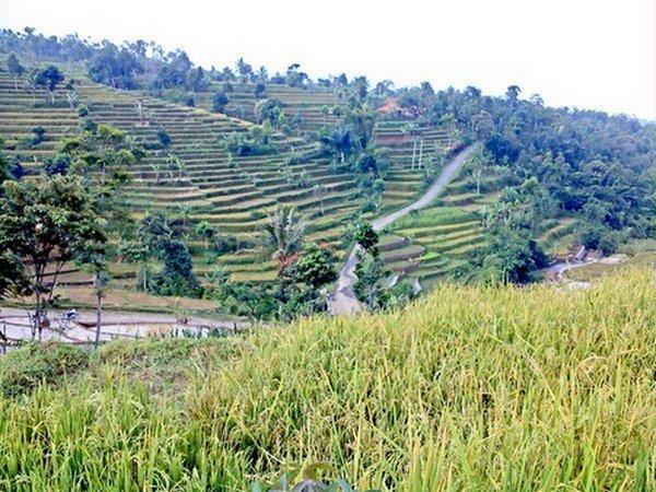 Salah satu wilayah di Kecamatan Cibugel (foto oleh Adie Supriyadie)