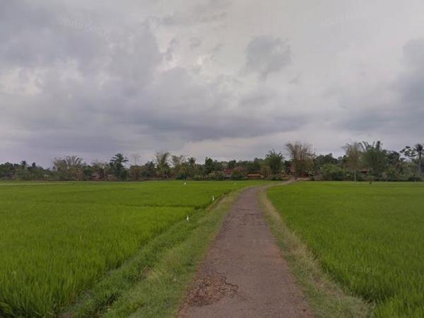 Panorama alam pesawahan Desa Leuwihideung (foto: Google Street View)
