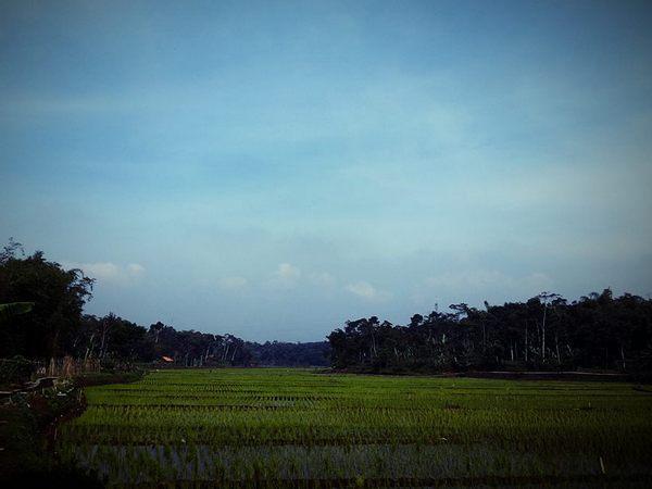 Suasana alam Desa Gunungmanik (foto: facebook)
